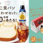 【クローズド懸賞】【ハガキ懸賞】500名様★サントリー「ねこねこ食パン 詰め合わせセット」