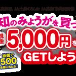 【クローズド懸賞】【ハガキ/web】500名様★JA高知県「現金5,000円分」